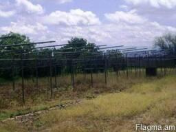 Ферма в с. Ноиакерт - фото 5