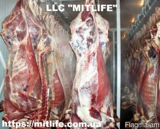 Говядина Телятина Мясо Халяль оптом Украина