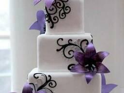The preparation and decoration of cakes Torteri dzevavorum u