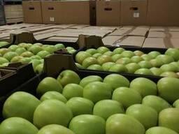 Яблоки из Польши! - photo 3