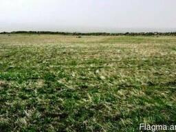 Земельный участок в с. Аралер - фото 4