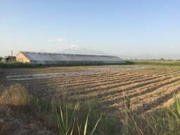 1, 5 հեկտար հողատարածք Հովտաշատ (Մեհմանդար) գյուղում