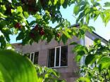 Двухэтажный каменный дом в Егегнадзорe /Армения, Вайоц-дзор/ - фото 1