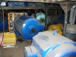 Электродвигатели 100 кВт - 3150 кВт, с хранения - photo 3