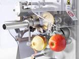Машина для чистки, нарезания, удаления сердцевины яблок 600 шт/час - фото 2