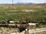 Продается земельный участок сельскохозяйственного назнач. - фото 4