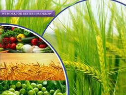 Производитель и поставщик пестицидов по всему миру