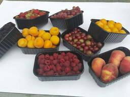 Упаковка для ягод, фруктов, яиц, мяса - прозрачная